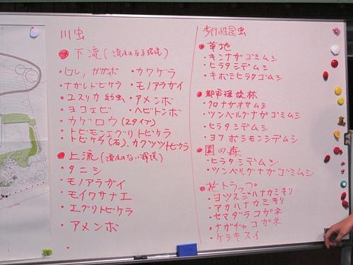 サマーワークショップ レクチャー 昆虫の種類.jpg
