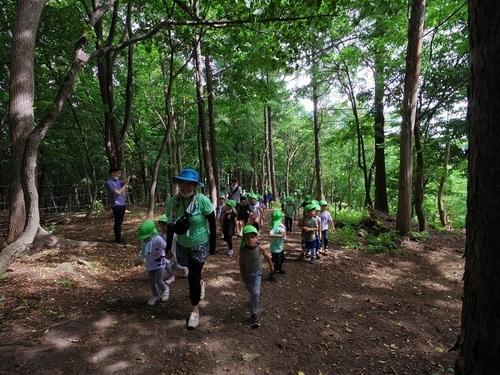 森 き1.jpg